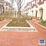 地面仿木 彩色地面仿木 地面仿木施工材料