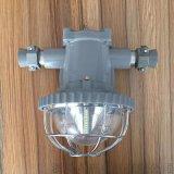 DGS18/127L(C)矿用隔爆型LED巷道灯