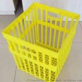 配蛋托用种蛋运输筐 塑料种蛋筐报价 塑料蛋筐厂家