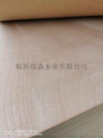 胶合多层木工板 杨木贴面板三合板