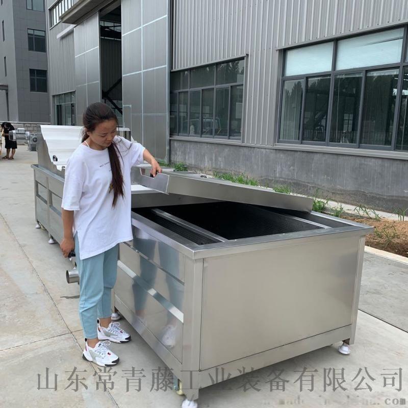 全自动果蔬蒸煮漂烫机 莲子蒸煮漂烫机
