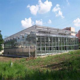 阳光板大棚建设 阳光板温室配置