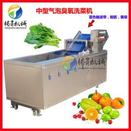 果蔬消毒洗菜机 蔬菜水果气泡喷淋清洗机