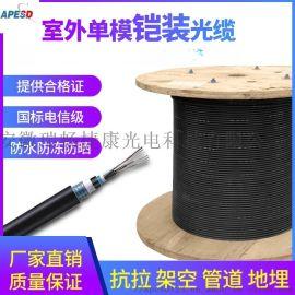 APESD室外单模铠装光缆4芯6芯8芯12芯24芯48芯96芯万兆光纤线缆