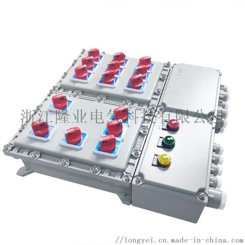 非标定制防爆配电箱控制箱控制柜
