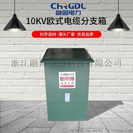 高压分支箱 10KV欧式分支箱 电缆分接箱