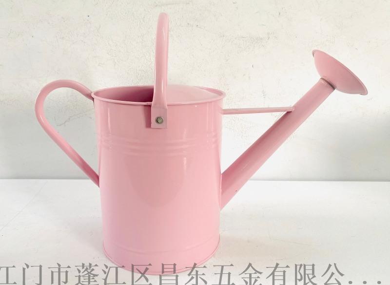 6L洒壶,铁皮壶,花园洒壶