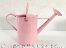6L灑壺,鐵皮壺,花園灑壺