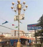 成都室外景觀燈丶成都公園燈丶綿陽廣場燈