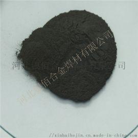 纳米铁粉50nm 100nm 200nm 厂家直销