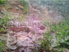高速公路护坡防护网 陕西