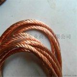 接地紫銅絞線tj120 150平鍍錫銅絞線生產