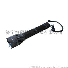 便携式JVZD-300手电式紫外线灯