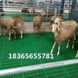 山羊漏粪板厂家 山羊塑料漏粪板 供应羊用漏粪板