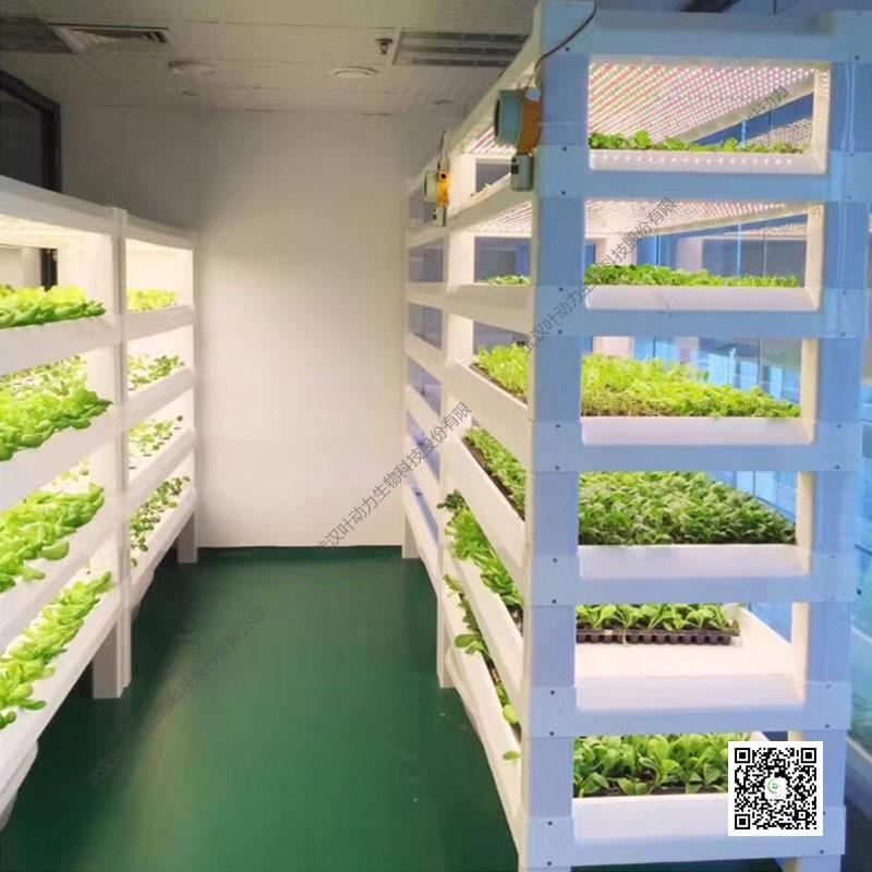 LED人工光型水培植物工厂种植模组六层种植架