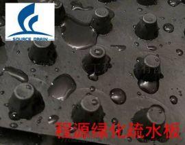 高密度聚乙烯排水板*蓄排水板型号*厂家供应