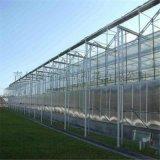 濰坊青州溫室專家建設玻璃溫室工程玻璃大棚建設