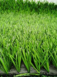足球场 运动场双色人造草坪  人工草坪
