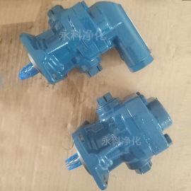 DK200RF齿轮泵燃油泵润滑油泵输送泵