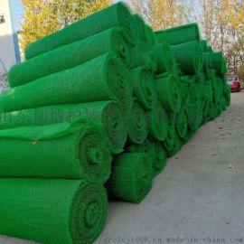 公路两边植草护坡三维植被网