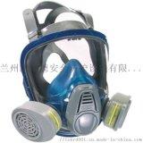 梅思安3200全面屏呼吸器防毒防酸全面罩