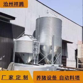 养殖镀锌**塔养殖料线自动系统养猪场设备