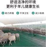 供應四川養羊塑料漏糞牀塑料羊牀羊牀漏糞板造價