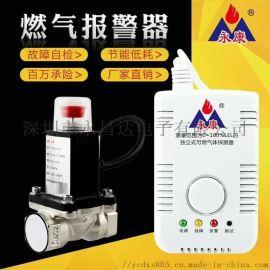 永康牌YK-CO一氧化碳报警器
