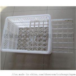 鸡蛋塑料箱  专业生产周转筐  种蛋周转筐厂家