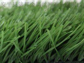 岳阳市岳阳楼草坪墙 仿真植物墙