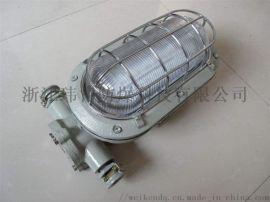 矿用DGC18/127L隔爆型LED支架灯