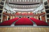 深圳学校礼堂椅、影院椅、剧院椅