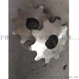 耐高温08A304不锈钢链轮