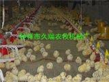 鸡用料线,肉鸡料线鸡水线,鸡自动上料机,养鸡设备
