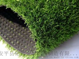 湖南常宁市围挡草坪供应 幼儿园人造草坪