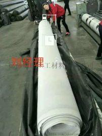 EVA防水板涵洞隧道地铁生产企业