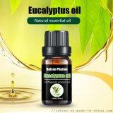 GMP 桉叶油 出口标准 原铺料 桉树油