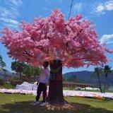 仿真许愿树桃花许愿树发光旋转许愿树拍照打卡真好看