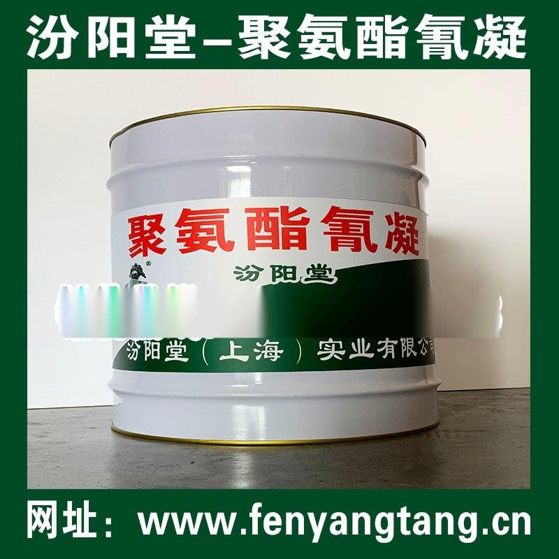 聚氨酯氰凝結膜、聚氨酯氰凝簡介、聚氨酯防水氰凝