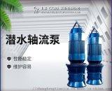 雨水泵站换新QZB潜水轴流泵