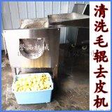 直銷根莖清洗機-土豆去皮毛刷清洗機-蔬菜清洗機