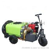 雾炮机果园果树风送式打药机 自走式果园喷雾机
