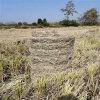 玉米秸稈撿拾型打捆機,5080小麥秸稈打捆機