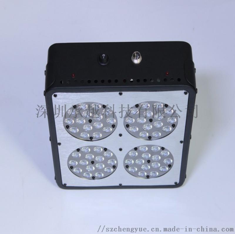 承越led植物灯厂家室内种植补光灯