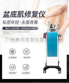 盆底肌修复仪多少钱一台,盆底肌修复仪器品牌厂家