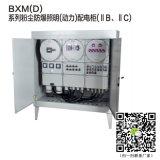 BXM(D)非标防爆照明动力仪表配电箱IIB
