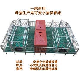 河北省欧迈厂家全复合热镀锌单双体母猪产床可定做