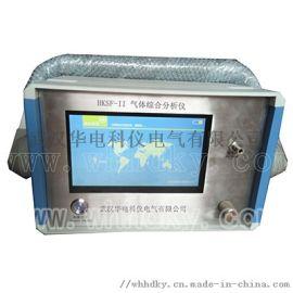 HKWG-II型SF6气体定量检漏仪