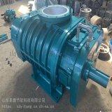 用於冶金能源礦業的SR-T100羅茨風機廠家供應