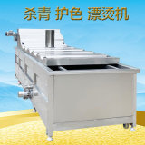 供应QD-8000娃娃菜连续式漂烫机